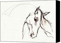 Horse Drawing Canvas Prints - Horse Sketch Canvas Print by Angel  Tarantella