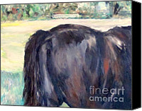 Patrick Mills Canvas Prints - Horse Tail Canvas Print by Patrick Mills