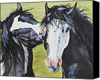 Melody Perez Canvas Prints - HorsePlay Canvas Print by Melody Perez