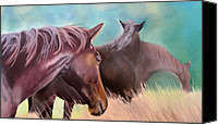 Horses Pastels Canvas Prints - Horses in Bisley Canvas Print by Juliet Matthews