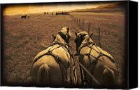 Pioneers Canvas Prints - Horses Pulling Carriage Canvas Print by Carson Ganci