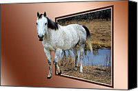 Freedom Mixed Media Canvas Prints - Horsing Around Canvas Print by Shane Bechler