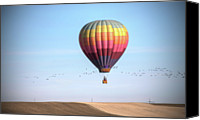 Flock Of Birds Canvas Prints - Hot Air Balloon And Birds Canvas Print by Photo by Greg Thow