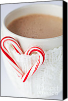 Hot Cocoa Canvas Prints - Hot Chocolate Canvas Print by Kim Fearheiley