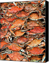 Food And Drink Canvas Prints - Hot Crabs Canvas Print by Sky Noir Photography by Bill Dickinson