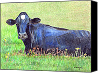 Cow Drawings Canvas Prints - How Now Blue Cow Canvas Print by Arline Wagner