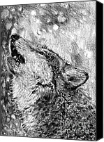 Winter Prints Drawings Canvas Prints - Howling Gray Wolf Canvas Print by J McCombie