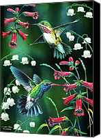 Feminine Canvas Prints - Humming Birds 2 Canvas Print by JQ Licensing