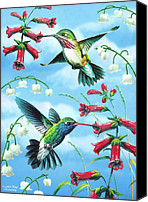Feminine Canvas Prints - Humming Birds Canvas Print by JQ Licensing