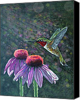 Humming Bird Canvas Prints - Hummingbird and cone flowers Canvas Print by Diana Shively