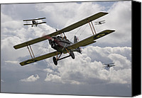 Raf Canvas Prints - Hunting Pack Canvas Print by Pat Speirs