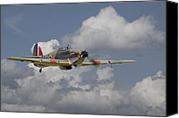 Raf Canvas Prints - Hurricane - Portrait Canvas Print by Pat Speirs