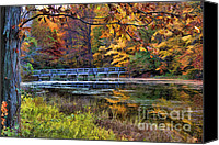 Fall Foliage Artwork Canvas Prints - Hush Canvas Print by Darren Fisher