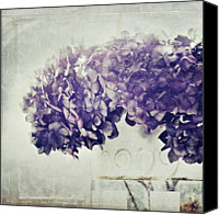 Textured Canvas Prints - Hydrangea In Vase Canvas Print by Silvia Otten-Nattkamp Photography
