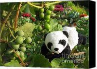Baby Panda Canvas Prints - I love grapes B Canvas Print by Ausra Paulauskaite