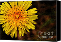 Want Canvas Prints - I want to be a Flower...2 Canvas Print by Kaye Menner