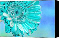 Abstract Flower Canvas Prints - Ice blue Canvas Print by Carol Lynch