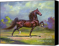 American Saddlebred Art Canvas Prints - Imperator Canvas Print by Jeanne Newton Schoborg
