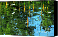 Impression Canvas Prints - Impression of Summer Canvas Print by Charline Xia