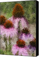 Cone Flowers Canvas Prints - Impressionistic Cones Canvas Print by Deborah Benoit