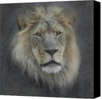 Mountain Lion Digital Art Canvas Prints - In Memory of Elson Canvas Print by Ernie Echols