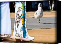 Seagull Canvas Prints - In Search of Elvis Canvas Print by Bob Orsillo