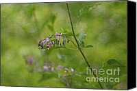 Photomanipulation Canvas Prints - In the Garden Canvas Print by Reflective Moments  Photography and Digital Art Images