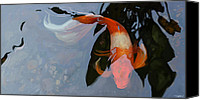 Koi Art Canvas Prints - In the Shadows Canvas Print by Steve Goad