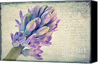 Close Up Mixed Media Canvas Prints - In the spring Canvas Print by Angela Doelling AD DESIGN Photo and PhotoArt