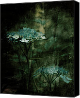 Teal Flowers Canvas Prints - In the Still of the Night Canvas Print by Bonnie Bruno