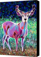 Mule Deer Canvas Prints - In the Velvet Canvas Print by Bob Coonts