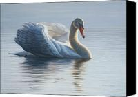 Swan Canvas Prints - In To The Light Canvas Print by Bruce Dumas
