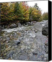 Creek Bed Canvas Prints - Indian Pass Brook in Adirondack Park - New York Canvas Print by Brendan Reals