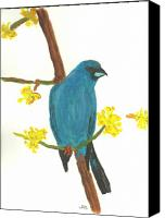 Bunting Painting Canvas Prints - Indigo Bunting on Forsythia Branch Canvas Print by John Smith