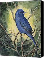 Bunting Painting Canvas Prints - Indigo Bunting Canvas Print by Sam Sidders
