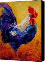 Rooster Canvas Prints - Indy - Rooster Canvas Print by Marion Rose