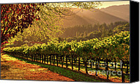 Fall Canvas Prints - Inglenook Winery Canvas Print by Mars Lasar