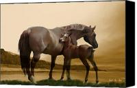 Foal Painting Canvas Prints - Inherit the Wind Canvas Print by Corey Ford