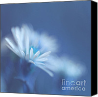 "\""painterly Photography\\\"" Photo Canvas Prints - Innocence 11 Canvas Print by Variance Collections"