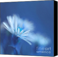 "\""painterly Photography\\\"" Photo Canvas Prints - Innocence 11b Canvas Print by Variance Collections"