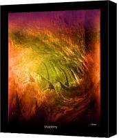 John Krakora Art Canvas Prints - Insanity Canvas Print by John Krakora