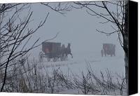 Horse And Buggies Canvas Prints - Into the fog Canvas Print by David Arment