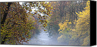 Valley Green Canvas Prints - Into the Mist Canvas Print by Bill Cannon
