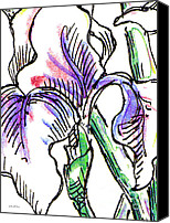 Calla Lily Drawings Canvas Prints - Iris Abstract Painting 2 Canvas Print by Gordon Punt