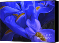 Blue Flowers Canvas Prints - Iris Sparkle Canvas Print by Roxy Riou