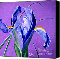 Greeting Cards Tapestries - Textiles Canvas Prints - Iris Canvas Print by Sylvie Heasman