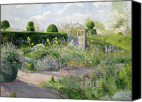 Hedge Canvas Prints - Irises in the Herb Garden Canvas Print by Timothy Easton