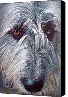 Animal Drawings Canvas Prints - Irish Wolfhound Canvas Print by Elena Kolotusha