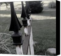 Ali Dover Canvas Prints - Iron fence Canvas Print by Ali Dover