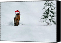 Groundhog Canvas Prints - Is It Christmas Yet Canvas Print by Bill Cannon